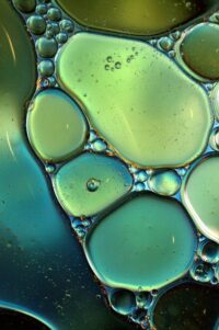 globules of oil in water